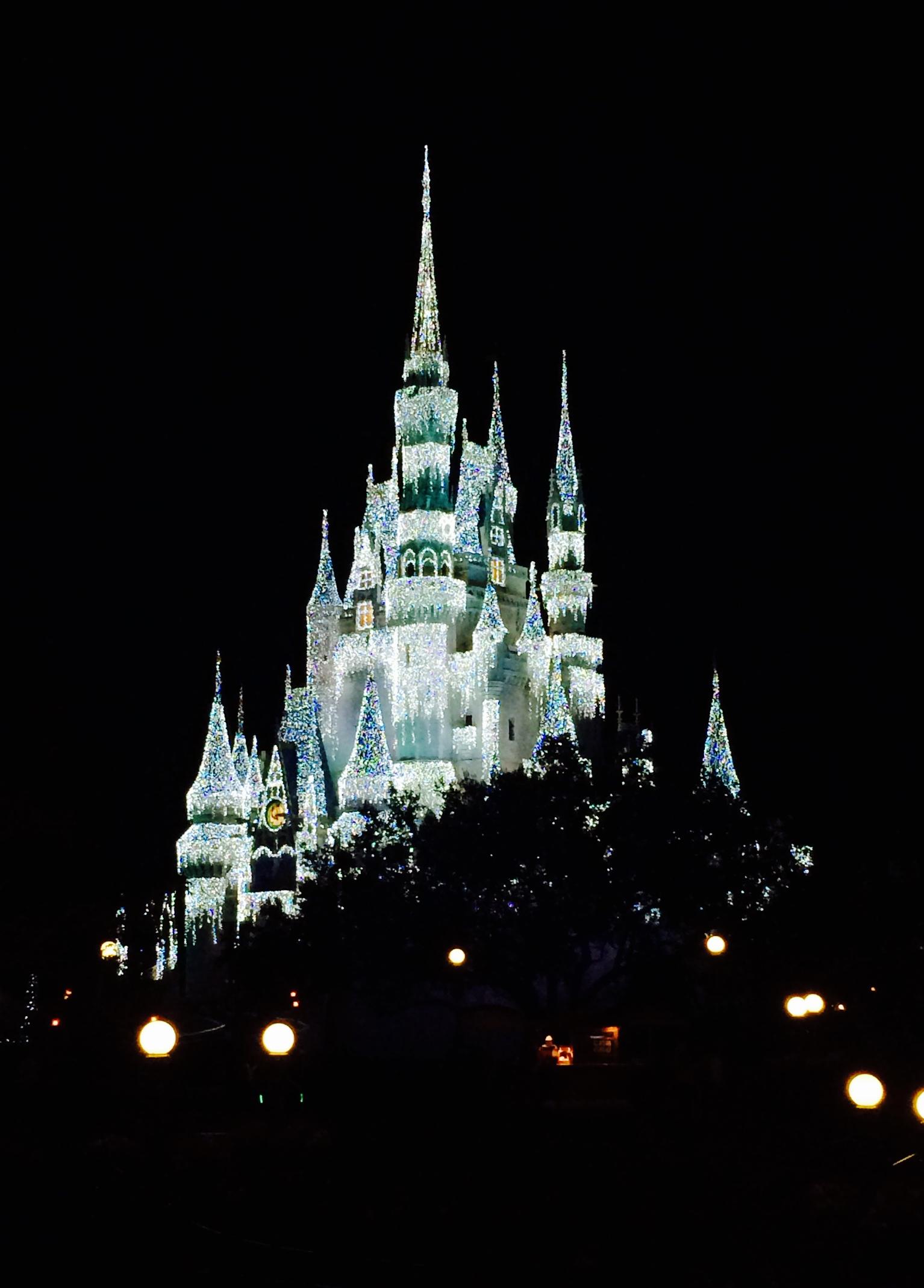 Cinderella Castle Frozen